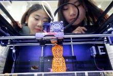 Jesse 3D Printing Image #2